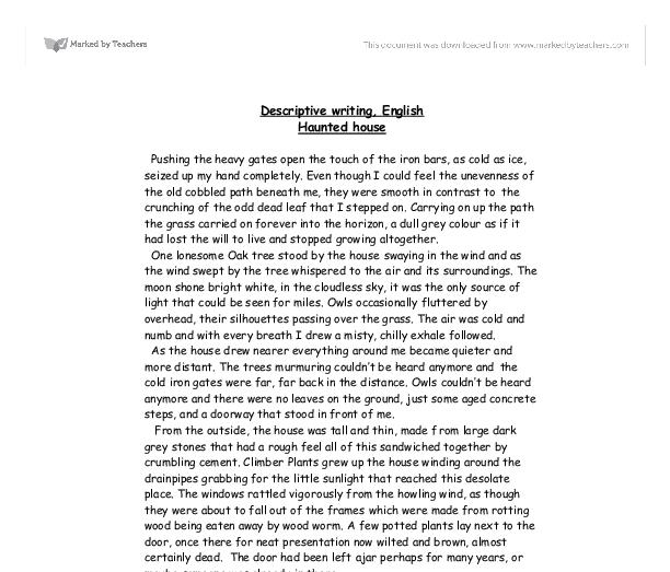 Descriptive essay about politics